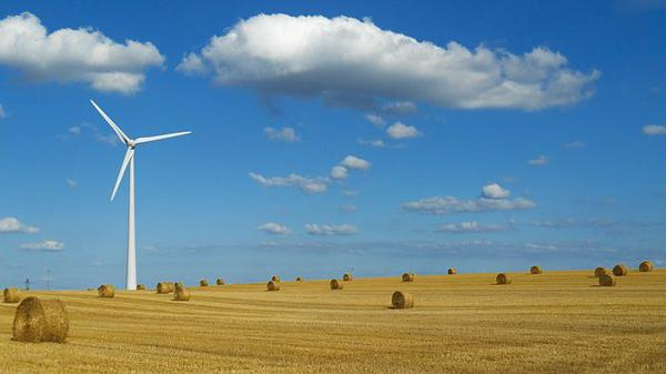 Dystrybutorzy turbin wiatrowych