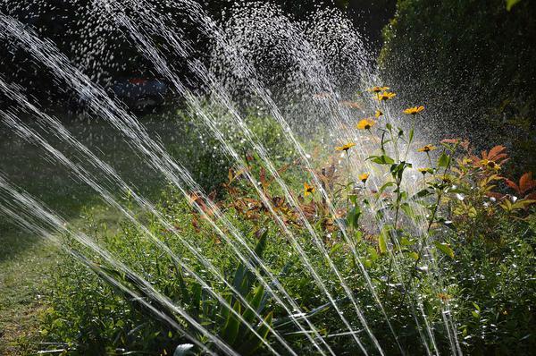 systemy nawadniania pól uprawnych